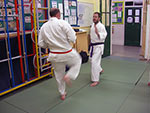 Sensei demonstrates to the class